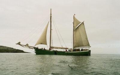 See-Ewer Petrine