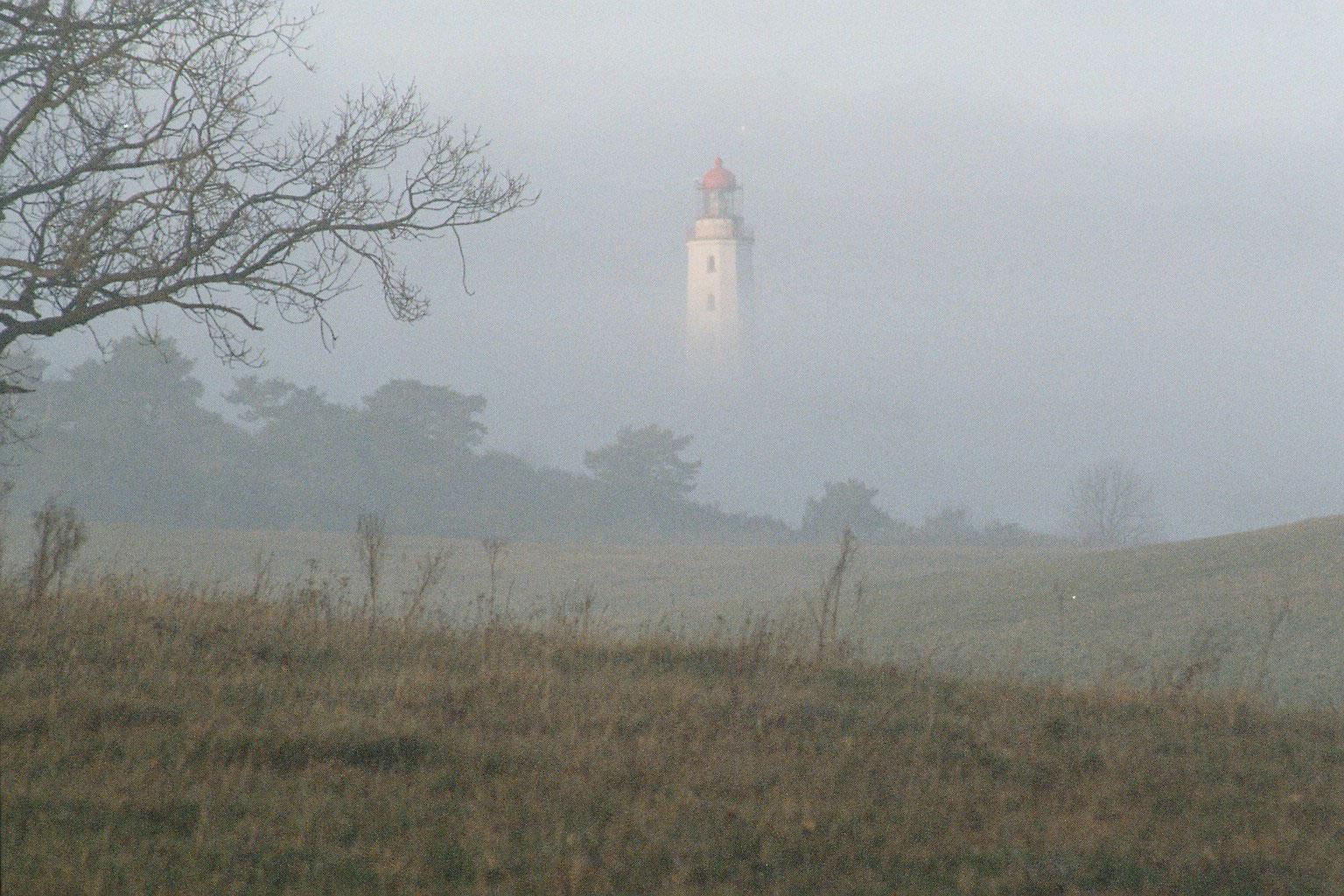 Leuchtturm auf Hiddensee im Nebel